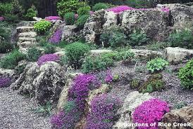 Small Picture Rock Garden Mn gardensdecorcom