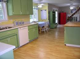 Yellow Paint Colors For Kitchen Green And Yellow Kitchens Aromabydesignus