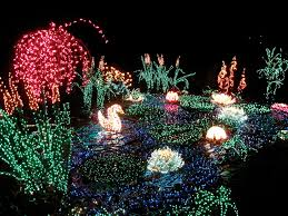 Bellevue Botanical Garden Holiday Lights Garden Dlights Bellevue Botanical Garden Www Bellevuebota
