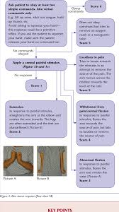 Gcs Scale Chart Figure 4 From Glasgow Coma Scale Flow Chart A Beginners