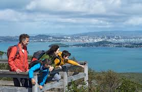 Image result for rangitoto volcano
