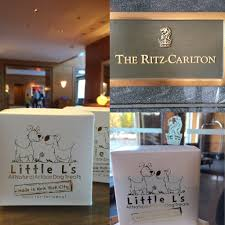 best dog friendly hotel new york city breed of dog dog travel archives little bites the best friendly hotels in new york city ritz carlton