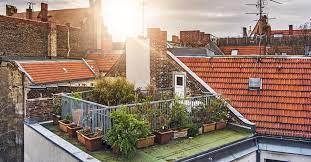 benefits of a rooftop garden