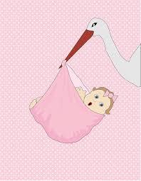 Resultado de imagem para bebe cegonha