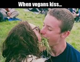 Image result for vegan memes