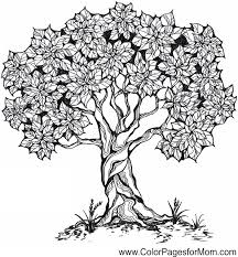Small Picture 100 ideas Coloring Page Tree on kankanwzcom
