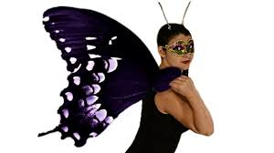 Adult butterfly costume to make