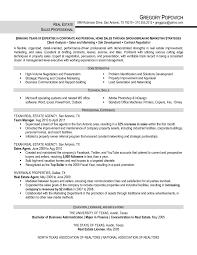 estate real realtor resume estate real resume sperson brefash estate real resume sperson brefash
