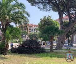 Città di Castellammare di Stabia (@di_stabia)