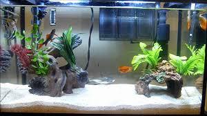 furniture aquarium. Aquarium Furniture Manufacturers