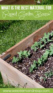Small Picture The Best Material for Raised Garden Boxes Weed em Reap