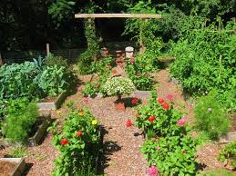 Small Picture 102 best Organic garden images on Pinterest Gardening Veggie