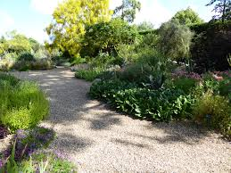 Small Picture Expert Advice 11 Tips for Gravel Garden Design Gardenista