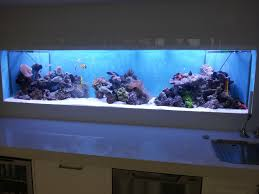 aquarium furniture design. 26 Unique Aquarium Furniture Ideas Innovative And Reliable From Design 67, Source