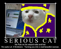 Image - 17010] | Serious Cat | Know Your Meme via Relatably.com
