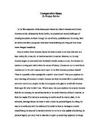 the alchemist essay introduction alchemist essay essays