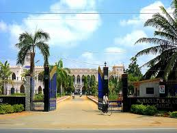 Colleges Of Agriculture Acharya Ng Ranga Agricultural University Agricultural College