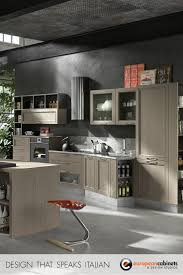 Kitchen Cabinets Brand Names 17 Best Images About Contemporary Kitchen Cabinets Projects On