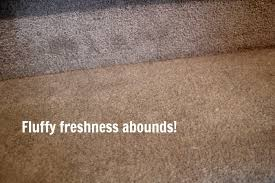 my carpet after a good diy carpet cleaning session no more stubborn carpet stains