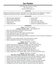 Dishwasher Job Description Impressive Dishwasher Job Description For Resume Sample Resume For Chef