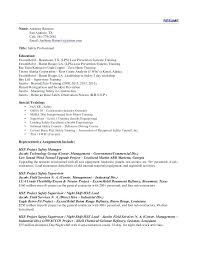 Resume For Customs And Border Protection Officer Inspiration Customs And Border Protection Officer Sample Resume On