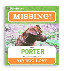 Dog Flyer Template Free Lost Dog Flyer Template Sign Up For Local Lost Pet Alerts Pawboost