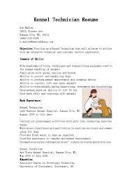 Resume Computer Tech Resume