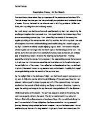 ideas collection descriptive essay of the beach ideas collection descriptive essay of the beach