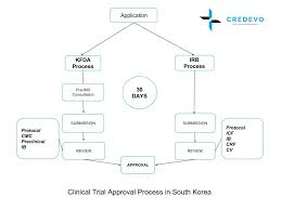 Clinical Trial Process Flow Chart Ppt South Korea Clinical Trials Regulatory Process Credevo