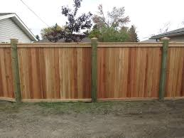 fences cedar friendly neighbour style fence with pressure treated posts with post caps