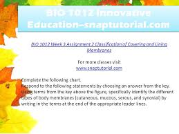 Classification Of Covering And Lining Membranes Complete The Following Chart Bio 1012 Innovative Education Snaptutorial Com Ppt Download