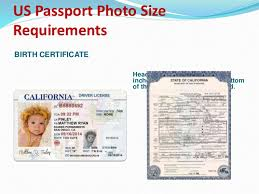 Voter License Apply Drivers Id Card 8617195049357 Online