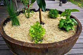 Small Picture Herb Garden Designs Garden ideas and garden design