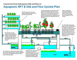 diy hydroponics plans awesome aquaponic equipment plans diy aquaponics systems can help you eat