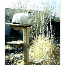 outdoor cat furniture diy tree house for cat house with escape door ideal condo outdoor