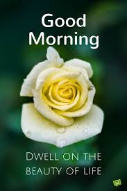 good morning dwell on the beauty of life