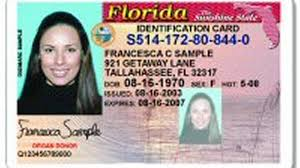 Renewals Sometimes Database Records Checks Herald Miami Florida's Driver's Delays License Balky