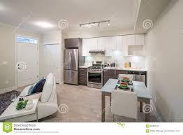 Helles Wohnzimmer Mit Sofa Und Küche Im Hintergrund