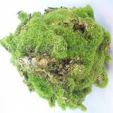 Decorative Moss Balls 60 Hot Sale Made In China Artificial Decorative Green Moss Balls 33