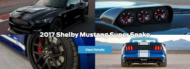 shelby mustang dams ford