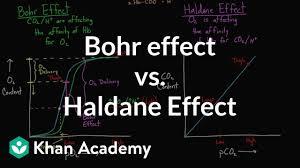 Hemoglobin To Hematocrit Conversion Chart Bohr Effect Vs Haldane Effect Video Khan Academy