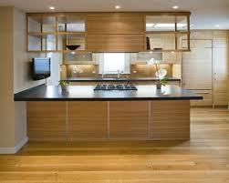 Indirekte Beleuchtung Küche Deckenleuchten Gemütlich