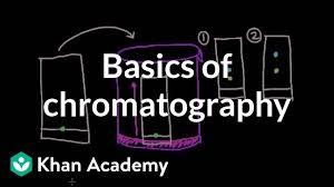 Basics Of Chromatography Video Khan Academy