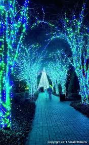 garden lights atlanta holiday walk botanical so pretty atlanta botanical garden lights promo code 2017