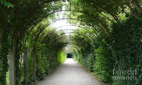 arbor garden. Europe Photograph - Salzburg Garden Arbor By Carol Groenen
