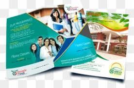 Tiger Press Brochure Printing Press Brochure Design Free