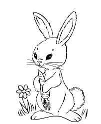 Small Picture Girl Rabbit Coloring Pages Coloring Pages