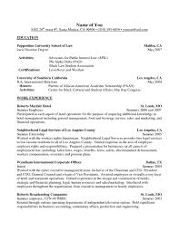 Resume Activities Example Hobbies And Interests On Resume Examples Winsome Example A List Of 13