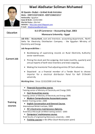 French Resume Examples French Resume Sample In English Resume Ixiplay Free Resume Samples 24