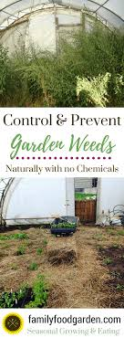 options for removing large areas of weeds are